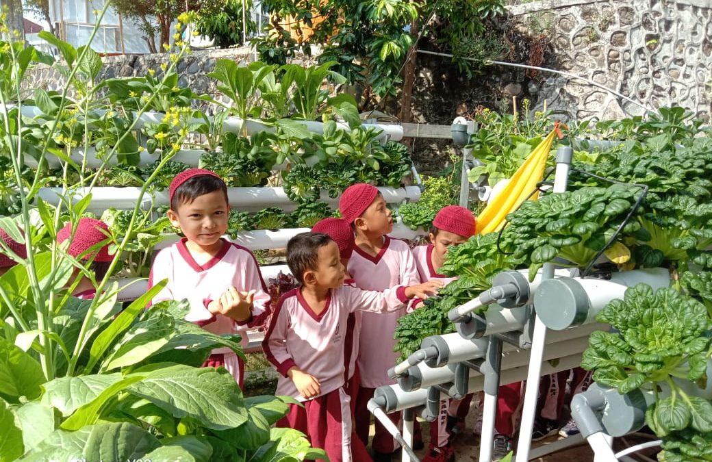 Murid PAUD IT Al Hasanah Wisata Edukasi ke BPTP Bengkulu